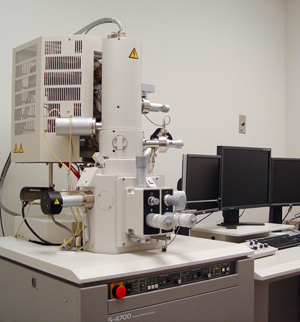 Microscopy Nebraska Center For Biotechnology Nebraska