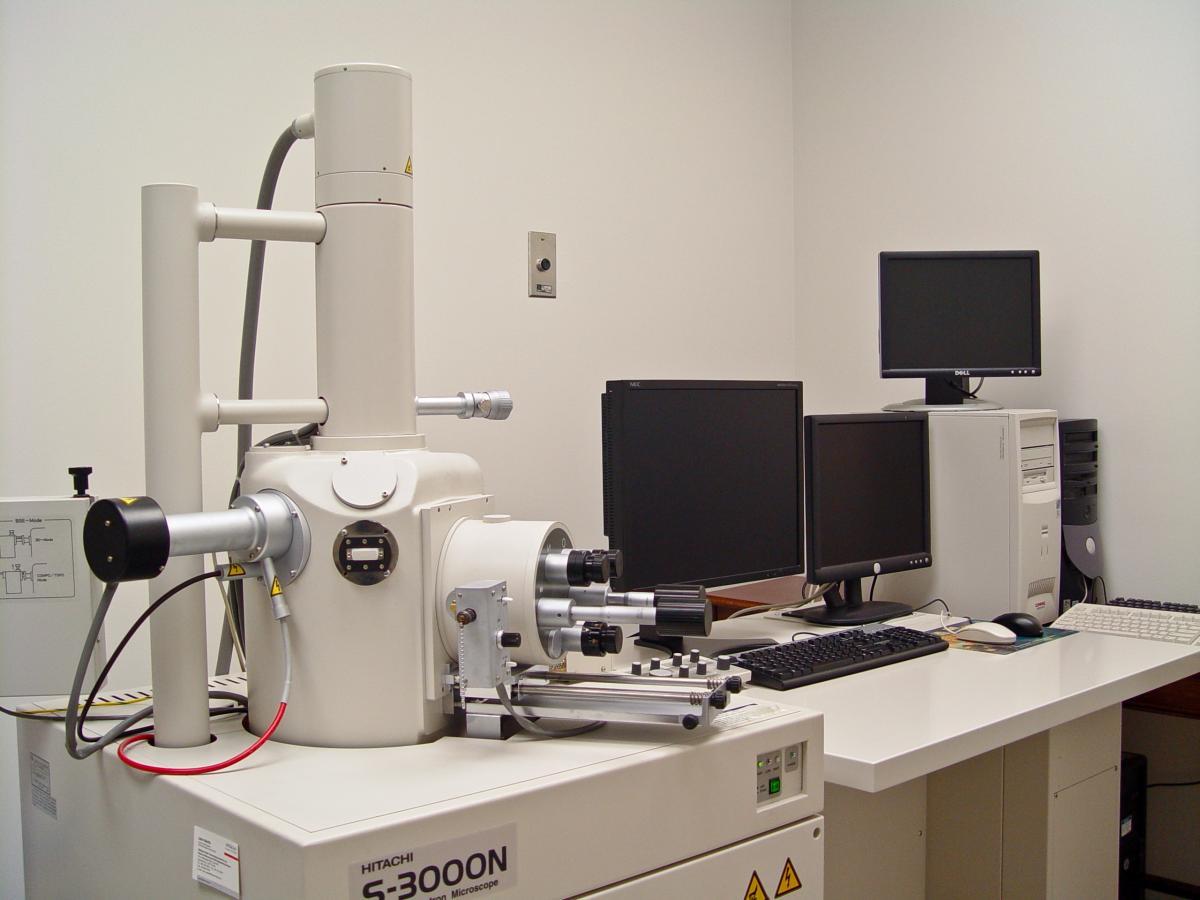 Microscopy  Electron  ...